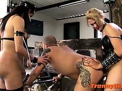dominant-shemale-punishers