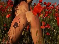 queensnake-com-poppy-1
