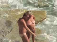 whale-strandings