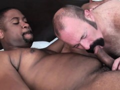black-bear-bottomed-by-chubby-mature