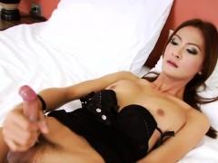 hung-asian-tgirl-toon-masturbates