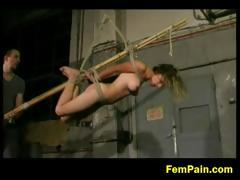 alexa-is-chained-and-tied-upside-down