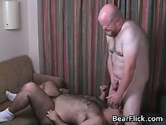 Kinky Fat Bears Anal Hardcore Fuck Part2