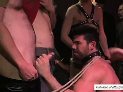 Hogtied Billy Santoro Swallowing Cocks