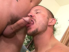 first-time-str8-porn-star-brenn-wyson-bottoms-version-2