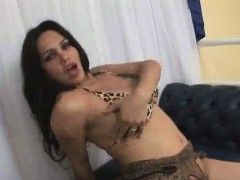 Busty Shemale Penelope Jolie Tugs On Her Stiff Dick