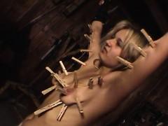 Elexier History Torture