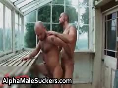 Hot Alpha Males In Gay Fucking Part4