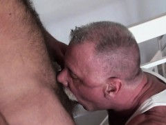 silver-wolf-cocksucking-hairy-otter
