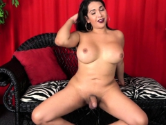 Curvy Busty Trans Goddess Pulling Cock Solo