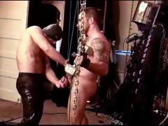 Extreme Cbt Session With Sexy Muscular Hairy Dude Suspended