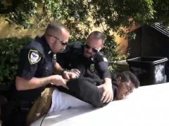 Sex Boys Gays Mans News Xxx After We Arrested Him, We